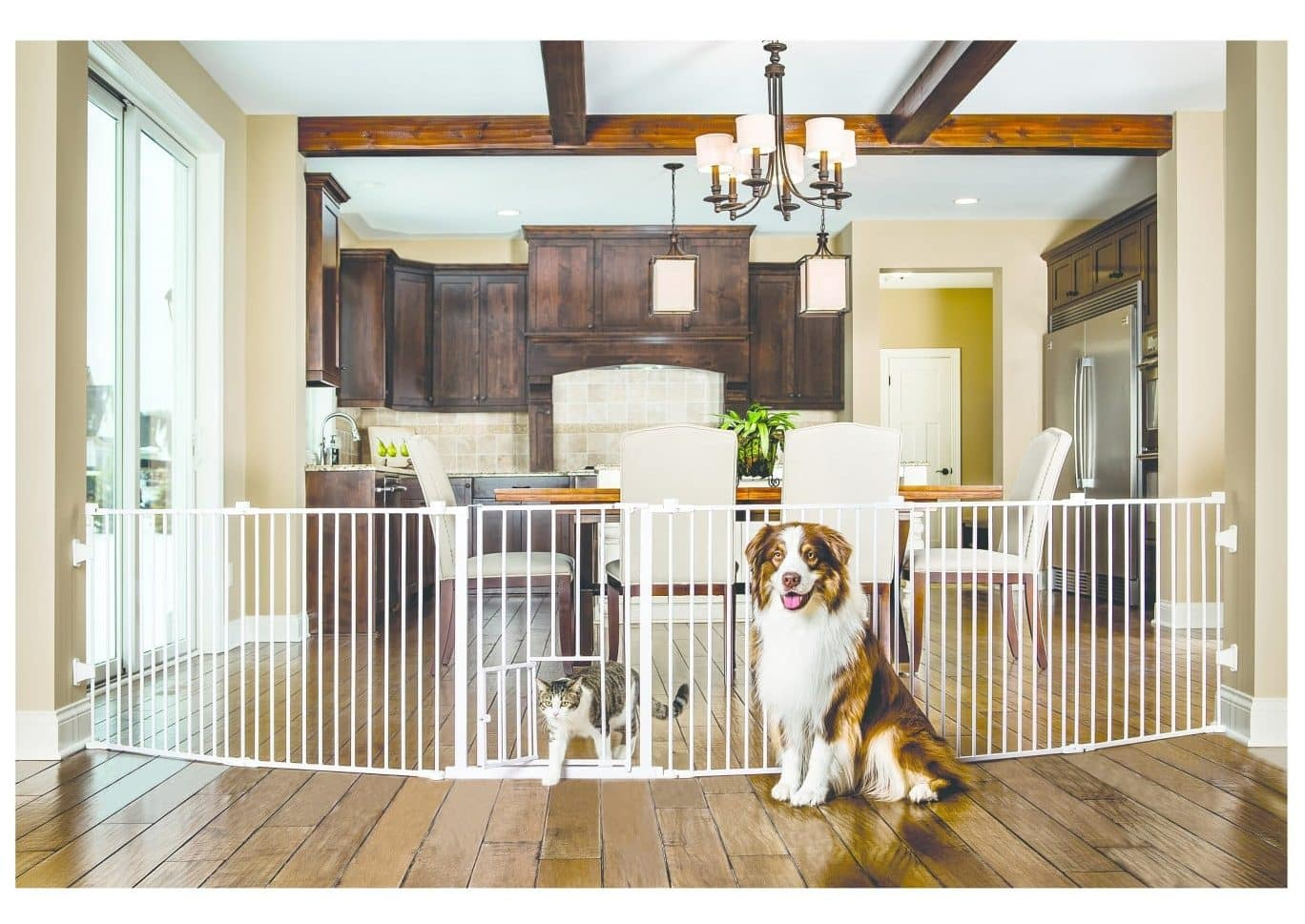The Top 10 Cheap Dog Fences For 2019 The Dog People By