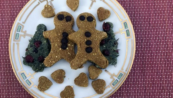 Winter Dog Treats: Recipes to Make at Home and Treats to Buy