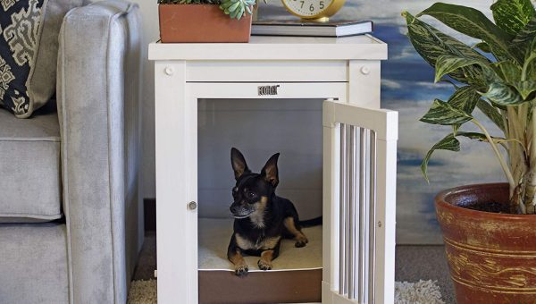 Top Small Dog Crates: 6 Options for Travel or Home