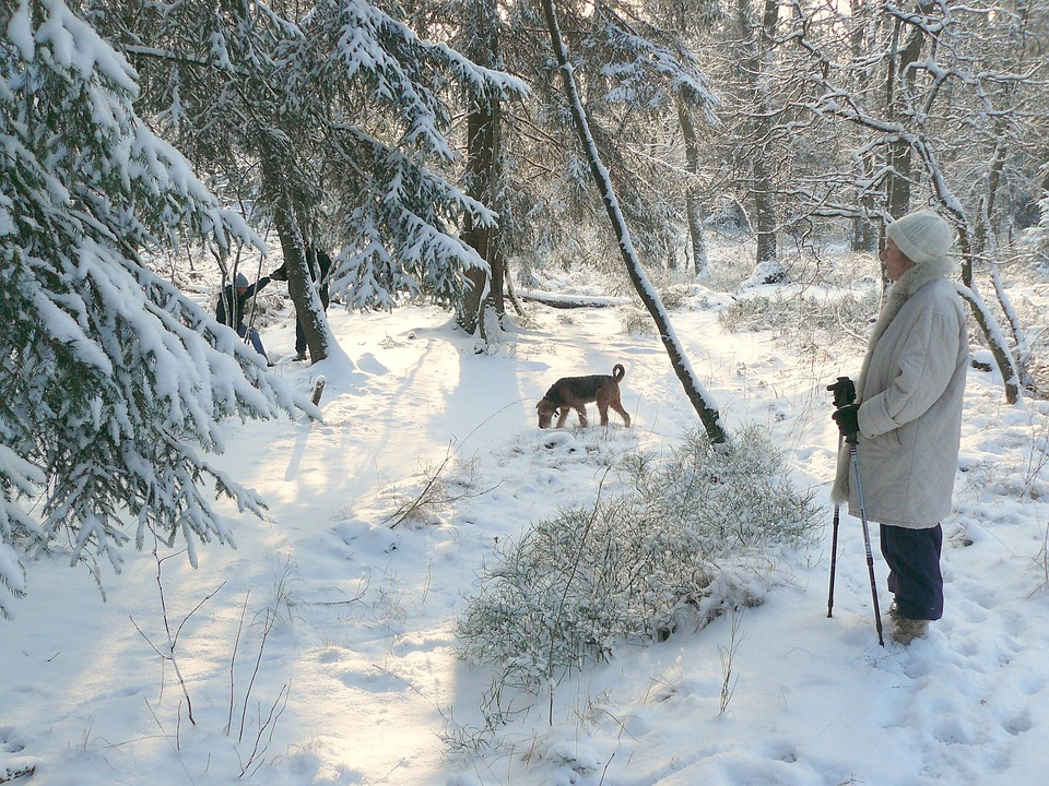 Woman enjoying snow with her dog