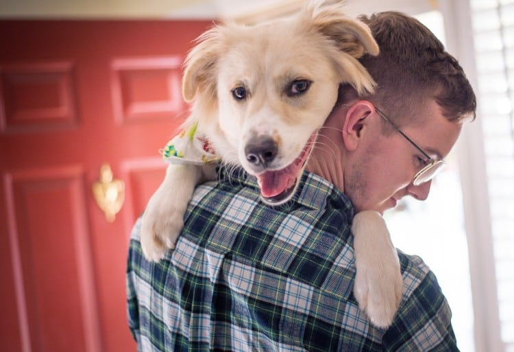 Pet Names For People: The 208 Best Dog Names That Start With R By Popularity