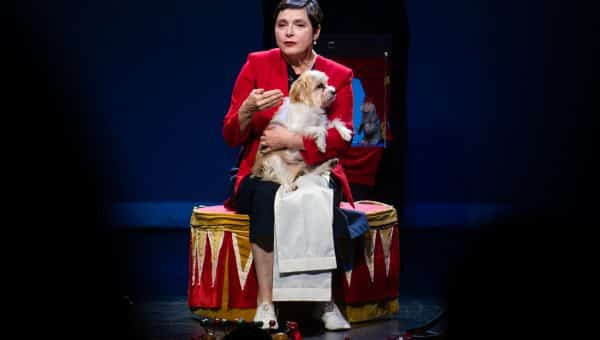 Here's What Happened at Isabella Rossellini's Crazy-Cool Show Starring Her Rescue Dog [Photos]