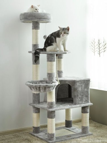 two cats lounging on gray Tucker Murphy Bybee condo