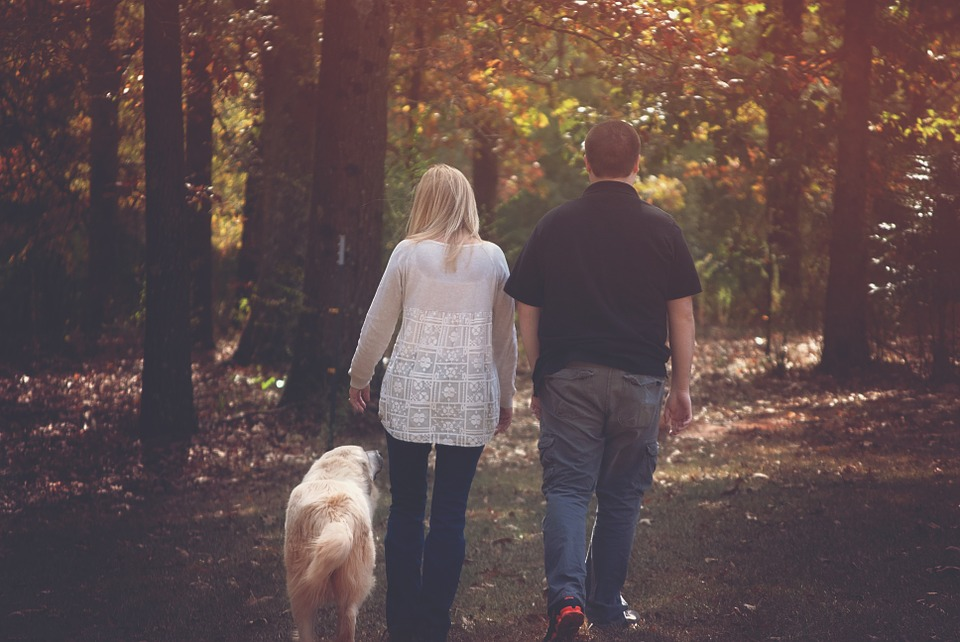 A couple walks with a dog in the forest.