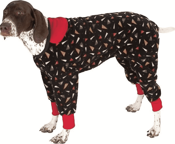 Winter Dog Clothes The Best Jackets