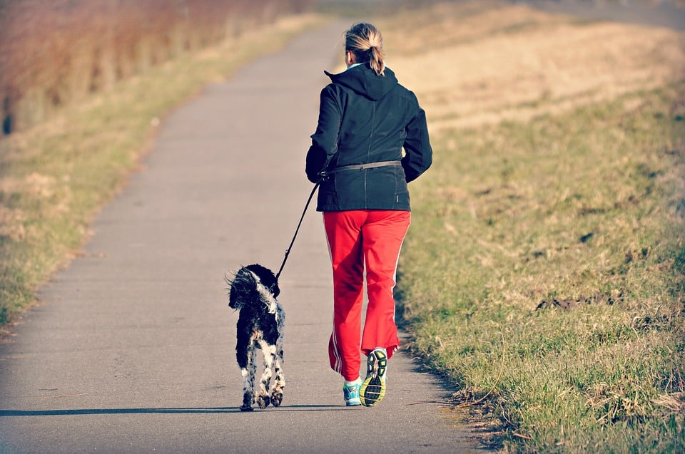 A woman jogs with a dog on leash.