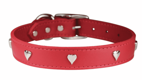 11 Adorable Valentine Dog Collars For Your Furry Valentine