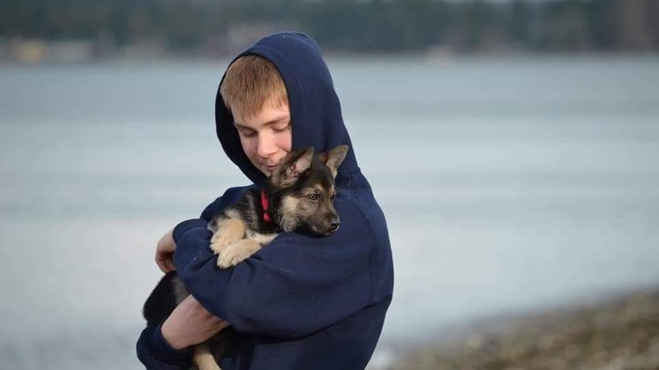 logan heart defect puppy bucket list