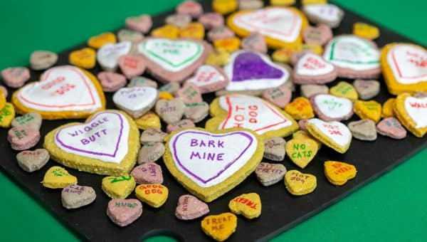 "Make These Conversation Heart Dog Treats to Say ""I Love You"" to Dogs"
