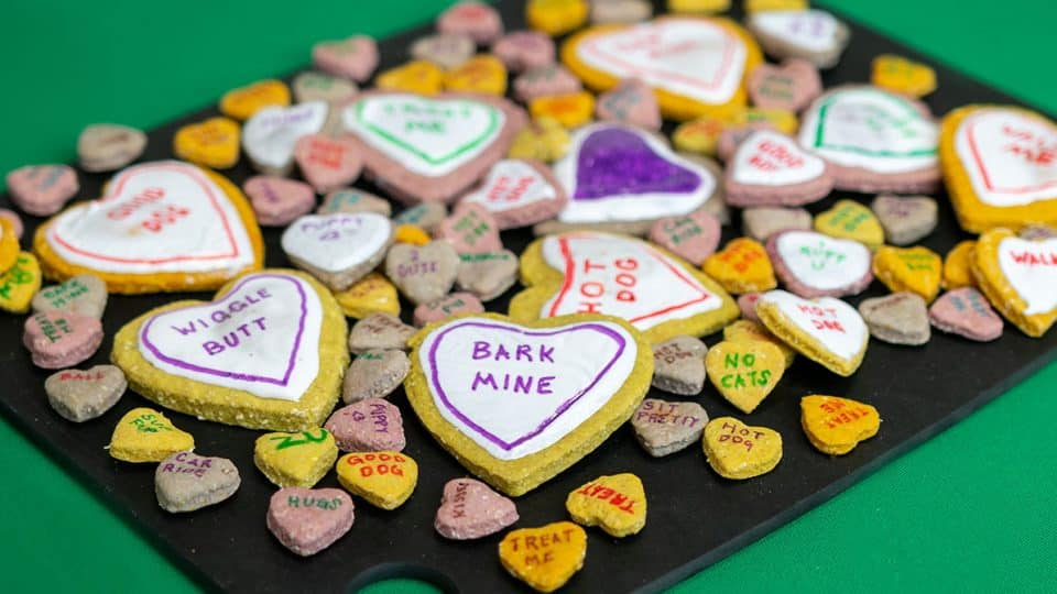 conversation heart dog cookie recipe