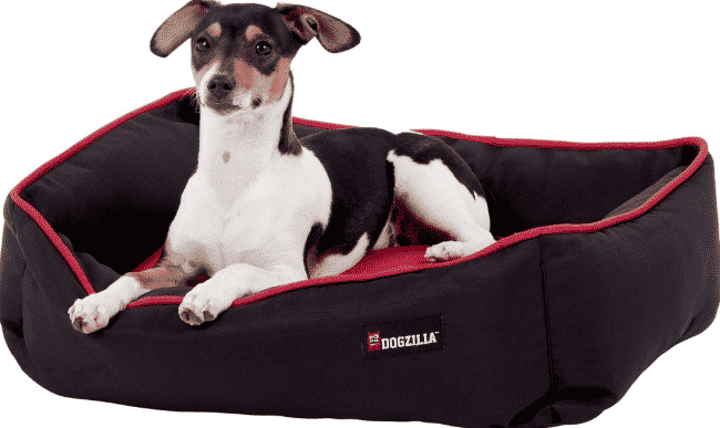 Chewy Dogzilla rectangle cheap dog bed