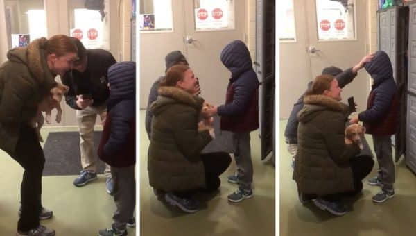 Family Surprises Grieving Son with Puppy Adoption in Heartwarming Video