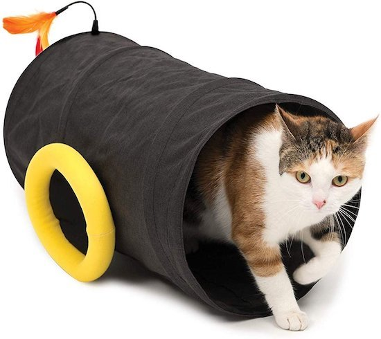 tunnel toy