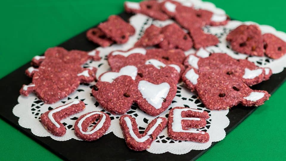 3 ingredient valentine's dog treats