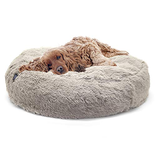 9 Best Waterproof Dog Beds For 2019 The Dog People By