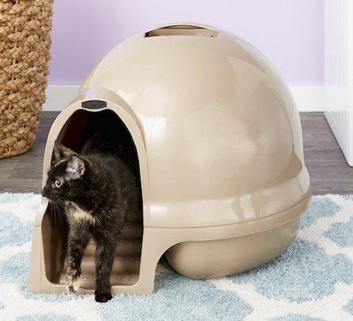 Booda Dome