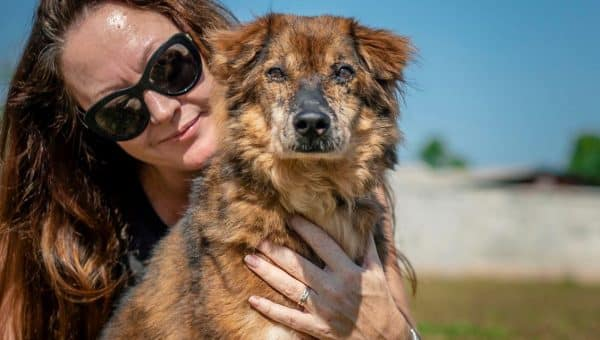Ailing Street Dog Undergoes Incredible Transformation, Is Ready for a Home
