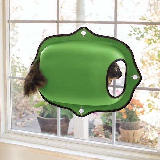 Divertidas camas de gato para ventana - cápsula de burbujas verde montada en ventana