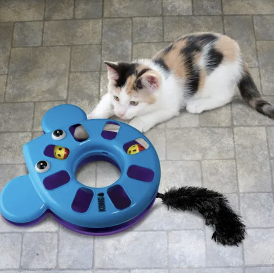 cat playing with blue Kong puzzle toy mouse