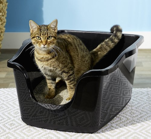 Nature's Miracle high-sided litter box for picky cats