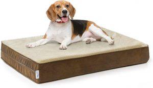 Beagle lying on eLuxury stain-repellent memory foam dog bed
