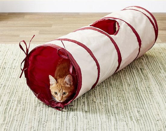 SmartyKat collapsible tunnel