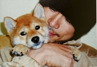 ikkyu as a puppy