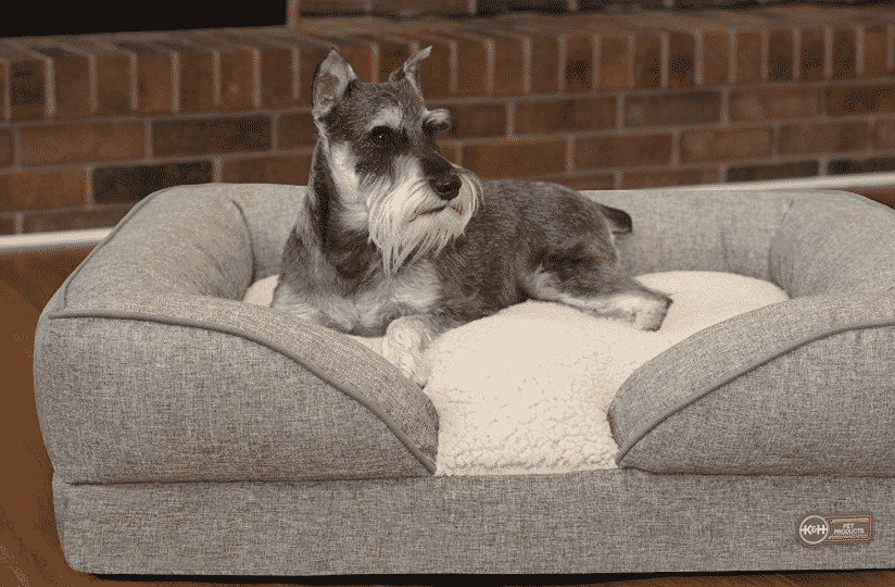 The 9 Best Orthopedic Dog Beds For 2019 With Reviews The