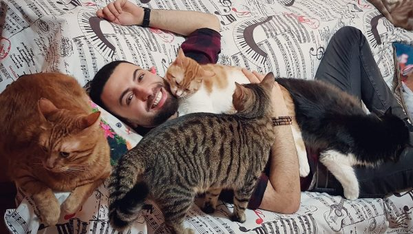 Composer Plays Original Music for His 19 Rescue Cats in Must-See Videos