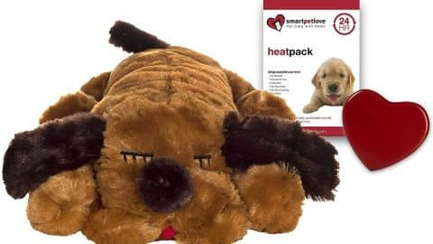 Smart Pet Love dog toy with heartbeat