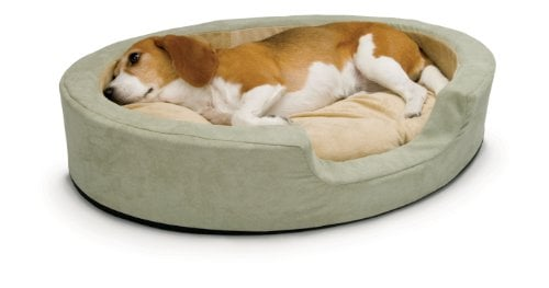 The Best Dog Beds on Amazon -- K&H