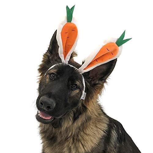 Carrot Bunny Ears
