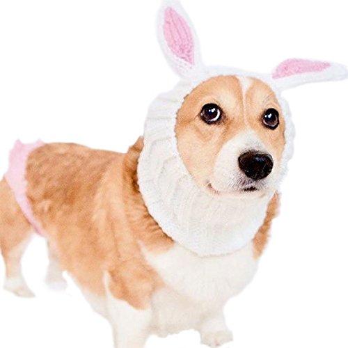 Zoo Snoods Easter bunny dog headpiece