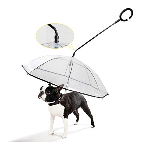 Fabulous The 4 Best Umbrella Dog Leashes For 2019 The Dog People By Download Free Architecture Designs Meptaeticmadebymaigaardcom
