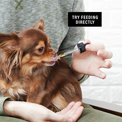 The Truth about Medical Marijuana and CBD Oil for Dogs in 2019