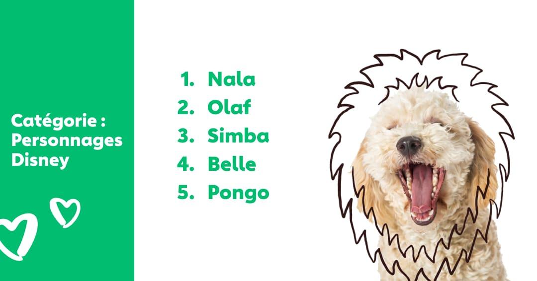 top nom personnages disney pour chien