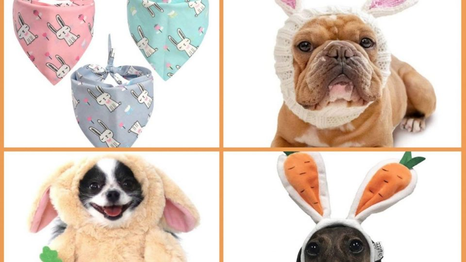 Easter dog outfits