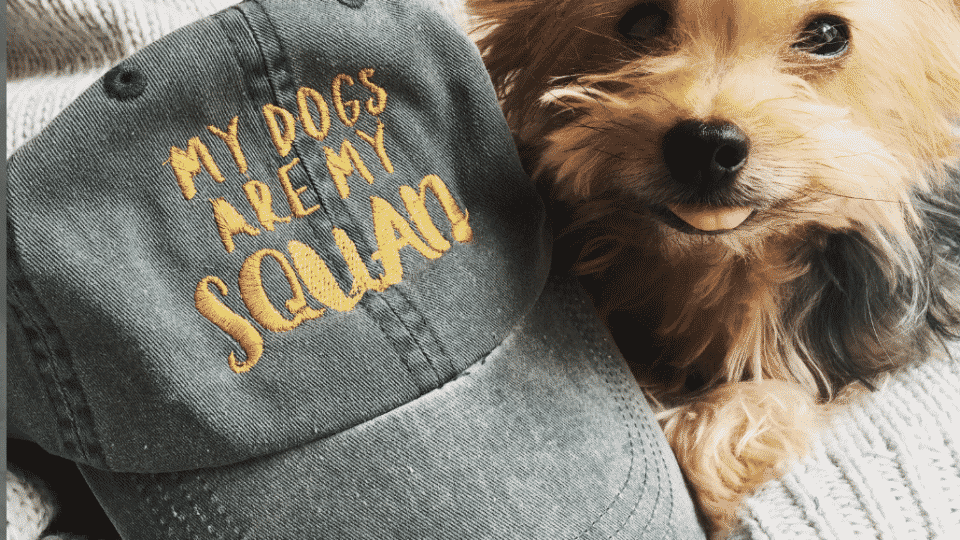 4609b9c31044a 14 Dog Mom Hats for the True Dog Moms of 2019  Our Favorite Picks