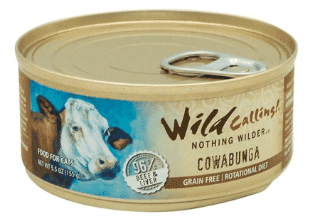 The Best Cat Food for Weight Gain in 2019