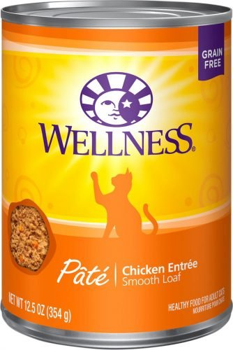 Wellness pate healthiest cat food