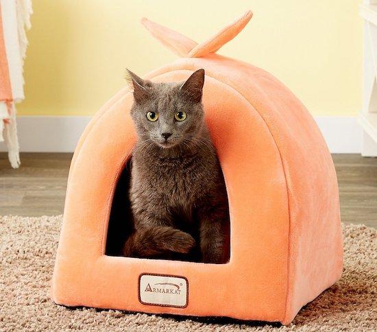 Armarkat orange hut
