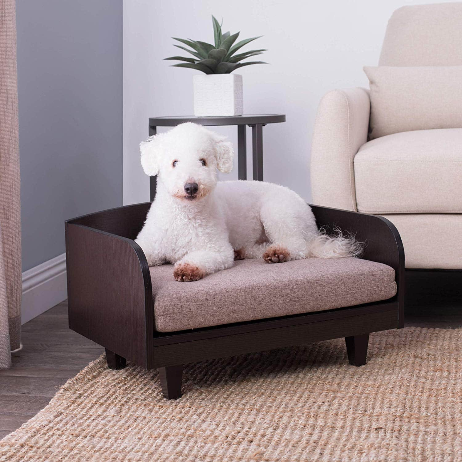 Picture of: Our 6 Favorite Elevated Dog Beds For 2019 The Dog People By Rover Com