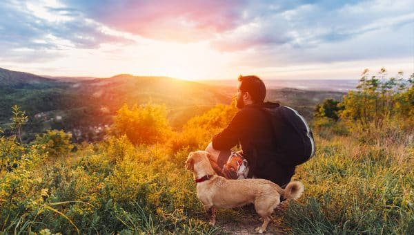 Top 5 Dog-Friendly Hikes in the Kitchener Area