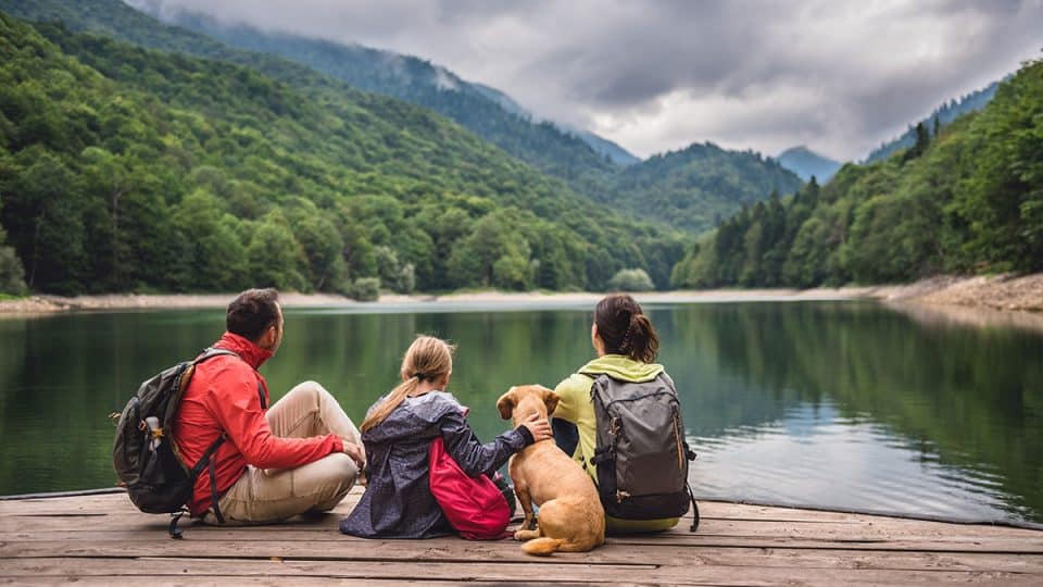 5 Best Dog-Friendly Hikes Near Toronto | The Dog People by