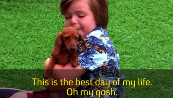 Kids Losing Their Minds Over Puppies is Gonna Make Your Day