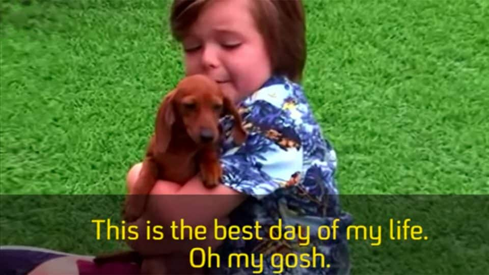 kids losing their minds over puppies