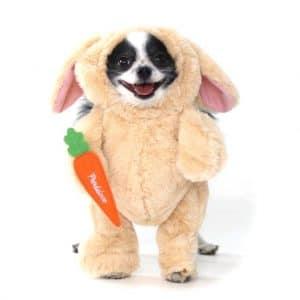 Pandaloon Easter bunny dog costume