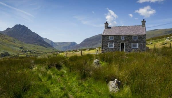 Top Dog-Friendly Cottages in the UK