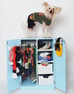 """Emma Buttarazzi aus Loughborough, Leics, mit ihrem Hund """"Prince"""". Sie hat Tausende von Pfund für Kleidung, Spielzeug und sogar für einen Kinderwagen für ihren Liebling ausgegeben. Auf dem Foto ist Prince mit seinem Kleiderschrank voller Hundebekleidung zu sehen."""