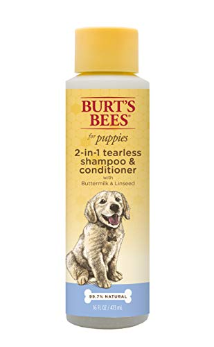 Burt's Bees for Puppies tearless puppy shampoo bottle